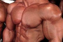 bodybuilder / buff & big