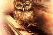owl's piano