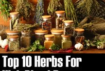 Medicinal herbs / by Patty Sellers