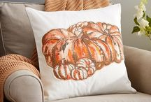 Pillows For All Season / A look at pillows, for everyday and holidays.