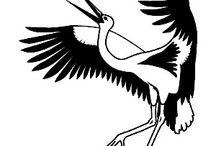 Cranes ,birds & ....