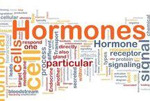 Harmones of Desire- https://www.safegenericpharmacy.com/blog/the-hormones-of-desire/