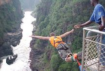 Bungy Jumps I've Done / by Lee Abbamonte