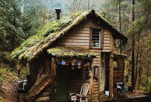 Лесной домик