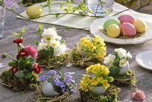 Osternkröbchen