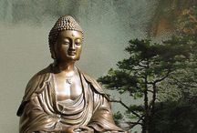 Buddha  / by Mary Phillips