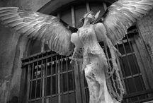 Angels / Angels: fallen, angelic