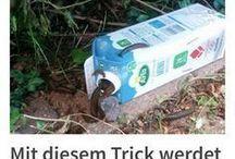 Tricks für den Garten