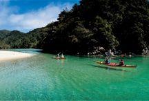 NZ Summer Road trip!