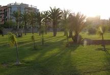 San Vicente del Raspeig (Alicante, Comunidad Valenciana)