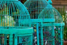 Free Bird / I love birds, nests, cages, eggs... especially birds flying free from their cage.  / by Sherry Rudegeair Morales