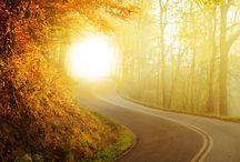 가을 / 가을풍경
