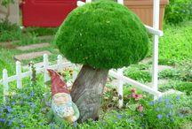 hongos para jardín