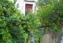 El house, Gavalohori, Crete