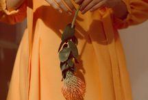**coral/gently orange/yellow/peach.m / ЛЮБИМЫЙ АЛЬБОМ