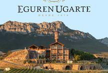 Hotel Eguren Ugarte / Dormir en el interior de una bodega, entre barricas y viñedos, es una experiencia única llena de sensaciones que podrás disfrutar en el Hotel Eguren Ugarte.  - - - - - - - - - -   Sleeping at a winery amongst barrels and vineyards is a unique experience the visitor can enjoy at Hotel Eguren Ugarte.