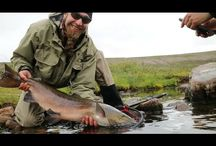 Fishing vlog videos / Episodes of fly fishing videos. Especially from fishing vloggers.