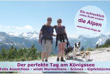 Reiseziele mit Hund / Die schönsten Reiseziele für Menschen mit Hund(en)
