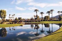 I LOVE PALM SPRINGS / by HILDE LAMORE