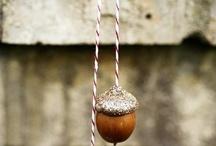 Beautiful acorns
