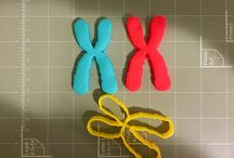 Medical Related Cookie Cutters