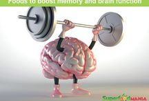 best foods for brain function and memory