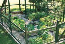 Garden {Fence} / by Bren Haas