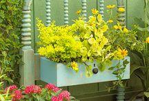 Virágos bútorok