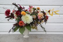 AUTUMN at Renfrow Farms / Fall flowers and produce at our farm in Matthews, NC