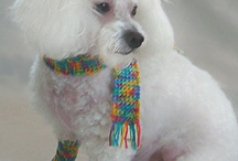 For Dogs! Free Crochet Patterns