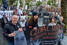 Actie voor de dieren wereldwijd