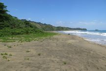 Playa Cocles - Costa Rica Beach / Le Caméléon Boutique Hotel is adjacent to Playa Cocles, a beautiful beach just 3 km away from the Costa Rica coastal town of Puerto Viejo.