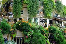 Κρεμαστοί κήποι