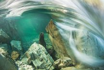 Breathtaking Under Water Photography / Underwater photography is an exciting, yet complex process. It requires very specialized equipment and knowledge of advanced techniques to capture the perfect shot.  Because it's such a specialized art, few photographers attempt it, but it delivers truly breathtaking and rare photographic opportunities.  Below are some examples of truly stunning underwater photography.  https://studiovox.com/companies/studiovoxinc/b/blog/archive/2015/03/12/breathtaking-under-water-photography