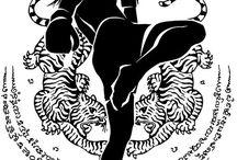 Arte marțiale mixte