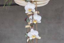 deco floral / bouquets