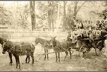Great Depression in the South research / My next book takes place in the South during the 1930's. I have a lot of research to do!