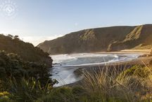 New Zealand Adventures / Explore New Zealand with us as we visit the North and South Islands!