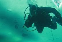 Marine, Dive and Trails Unit (MDT)