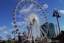 Things to do in Niagara Falls for Seniors / by Clifton Hill