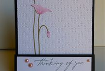 CARDS-Thinking of You