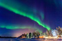 Boreal Auroras
