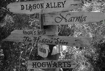A world of pure imagination  / Where dreams really do come true