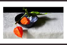 Saskia Boelsums / A collection of still life photography by Saskia Boelsums, for sale including a beautiful small black frame, for € 575 per image (limited edition).