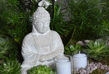 buddha feature