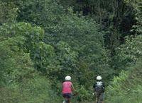 Biking and other fun things