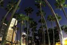 Tampa, Florida / Beautiful and not so beautiful places in Tampa, Fl