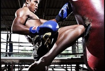 Fight & budo