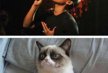 Grumpy kitty sayings