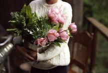 Flowers lifestyle